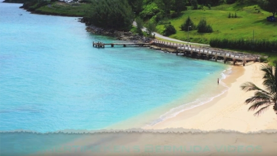 SummertimeKen on the Beaches of Bermuda