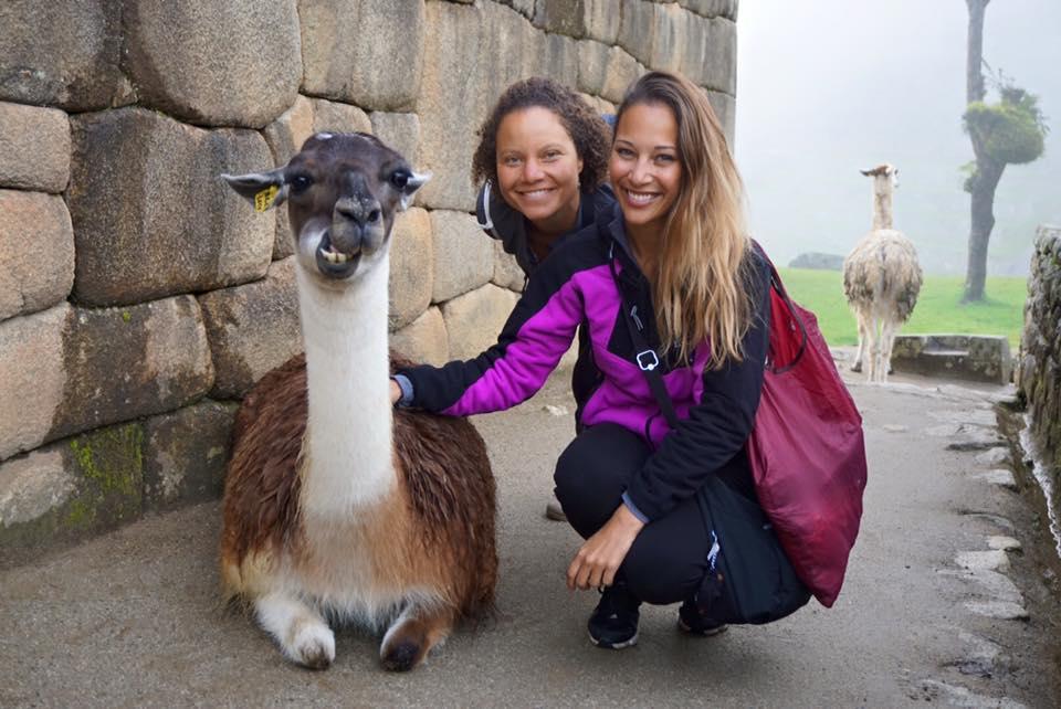 Machu Picchu Llama Peru Rachel Sawden We Are Bermuda