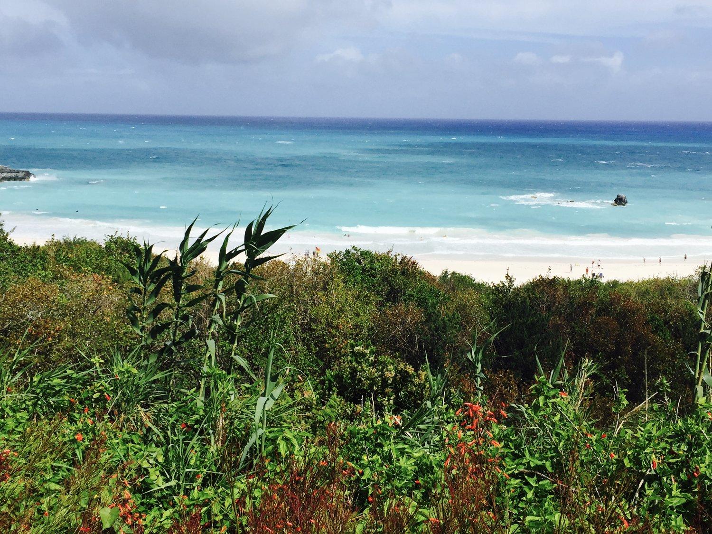 The Beaches of Bermuda